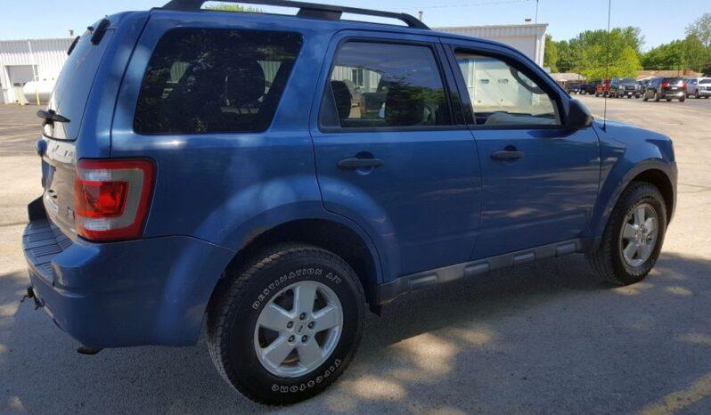 2010 Ford Escape full